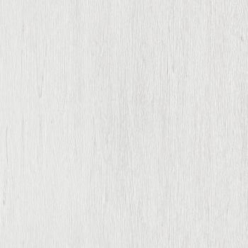 236 sosna biela