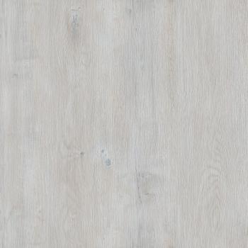 238 dub biely jasny